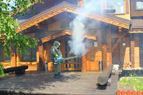 Фумигация деревянных построек