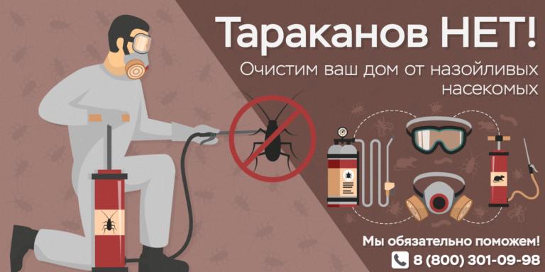 Дезинсекция Дезинфекция Дератизация СЭС Черноголовка