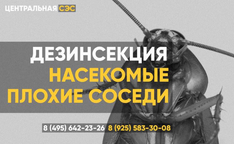 Дезинсекция Дезинфекция Дератизация СЭС Мытищи
